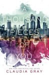 a-thousand-pieces-of-you-467981