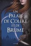 un-palais-de-colere-et-de-brume-1011701